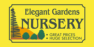 Home About Services Weekly Specials Pictures Resources Contact Hours Elegant Gardens Nursery